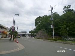 ariokajo13.JPG