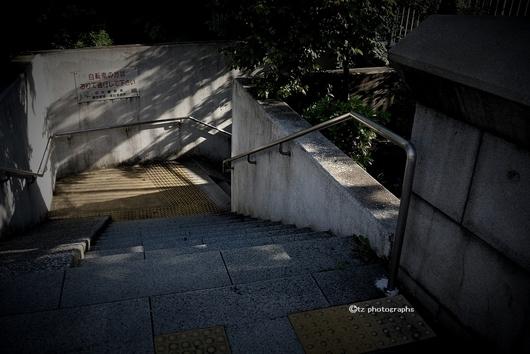 edobashi kirin 02.jpg