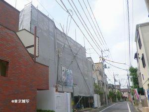 gotokuji araki09.JPG