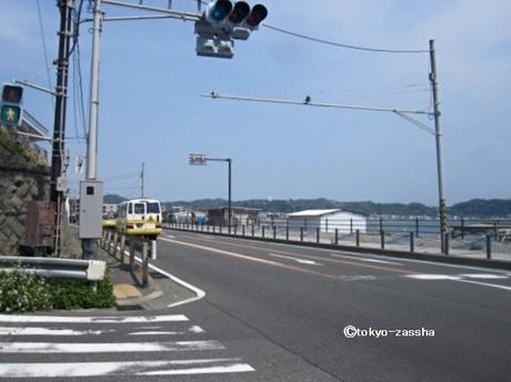 hase20umizuki05.jpg