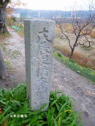 hashimoto-houdai03.JPG
