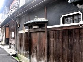 hashimotoy03.jpg
