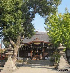 higashino k shouji07.jpg