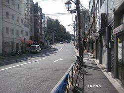 ichiyouyayoi02.jpg