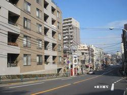 ichiyouyayoi03.jpg