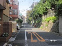 ichiyouyayoi05.jpg