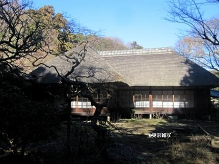kamakurashibusawa04.jpg