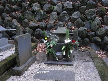 kamakurashibusawa05.jpg