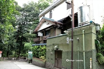 kichi-wakamizu01.jpg