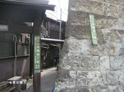 kikusaka natsu04.jpg