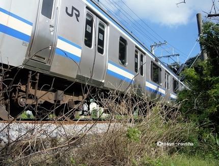 mikanyoshikura04.jpg