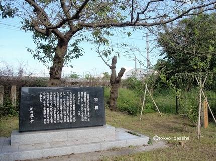 mikanyoshikura05.jpg