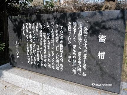 mikanyoshikura06.jpg