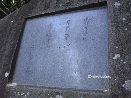 misakatenka06.jpg