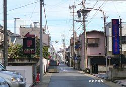 nakamura hagoromo03.JPG