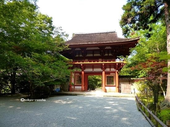 naramuroji04.jpg
