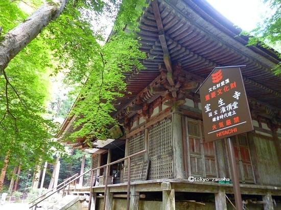 naramuroji07 (2).jpg
