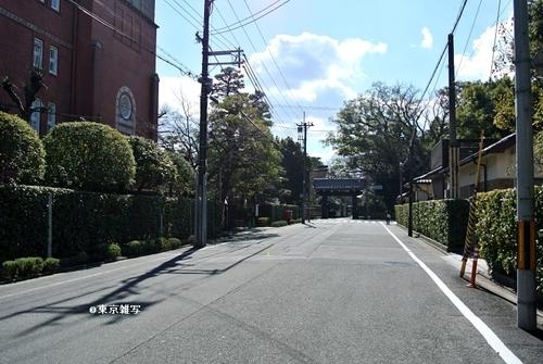 nihonmatsusaigo01.jpg