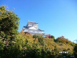 nobunaga-gifu02.JPG