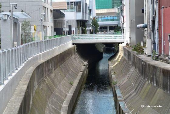 shibuya stream2018 03.jpg