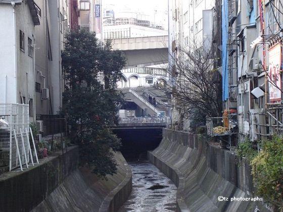 shibuya stream2018 04.jpg