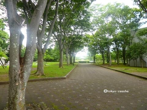 shizuko04.jpg