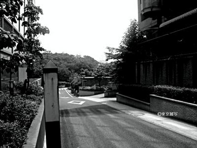 suzukijijuu03.jpg