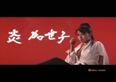 taiyohakaba03.jpg