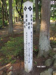 tano-keitoku17.jpg
