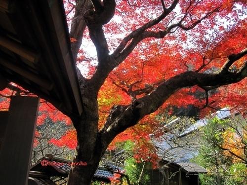 tokeiji01.jpg