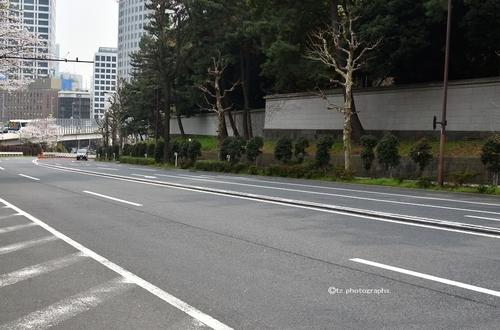 yakumokinokunizaka01.jpg