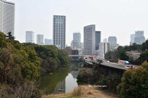 yakumokinokunizaka02.jpg